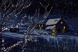holiday lighting in cypress