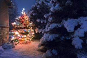 sugar land christmas lighting